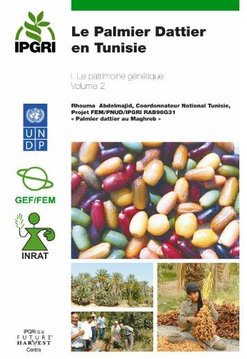 Le Palmier Dattier en Tunisie - Bioversity International