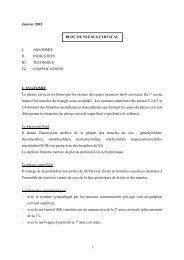 BLOC DU PLEXUS CERVICAL - virtanes