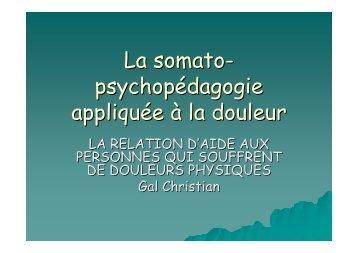La somato- psychopédagogie appliquée à la douleur - Christian Gal