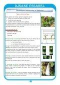 DJNANE ESSAHEL - Institut Technique de l'Arboriculture Fruitière et ... - Page 4