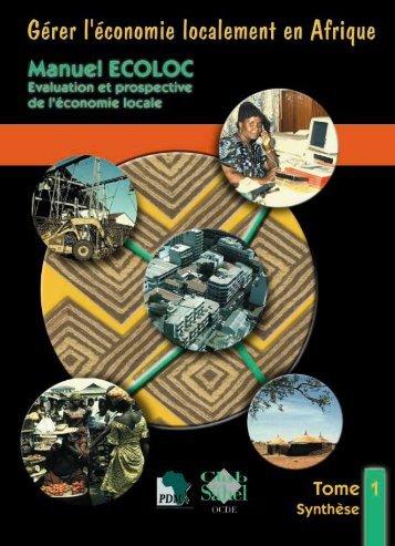 Gérer l'économie localement en Afrique. Manuel ECOLOC ... - Paris21
