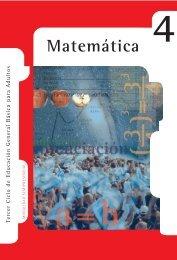Matemática Nivel IV - Región Educativa 11