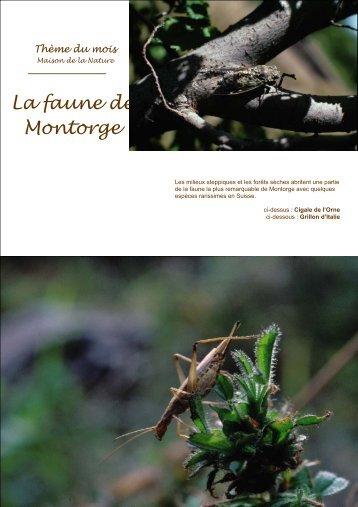 La faune de Montorge - Maison de la Nature