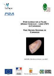 Etude globale sur la Telline - Parc naturel régional de Camargue