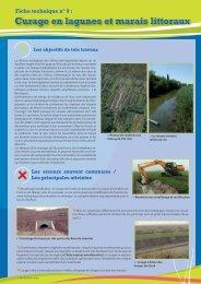 N°9 : Curage en lagunes et marais littoraux - Pôle-Relais Tourbières
