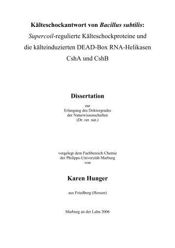 to download the PDF file. - Philipps-Universität Marburg