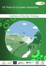 UK National Ecosystem Assessment – Synthesis ... - ARCHIVE: Defra