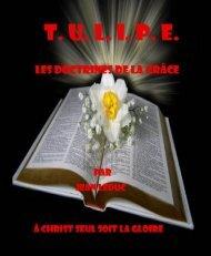 tulipe les doctrines de la grâce - Le Vigilant
