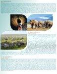KENYA, TANZANIE ET NAIROBI - Agence voyage Louise Drouin - Page 3