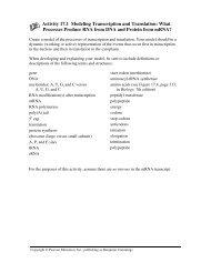 Activity 17.1 Modeling Transcription and Translation ... - Archives