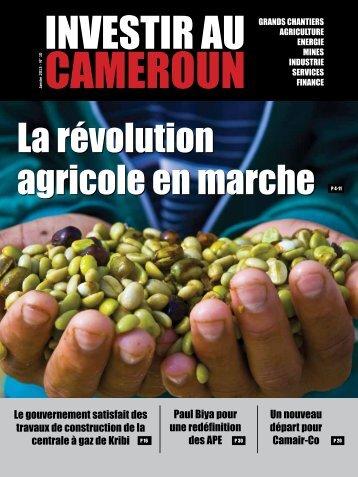 Investir au Cameroun 10
