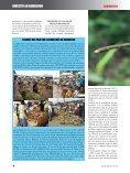 Investir au Cameroun 10 - Page 6