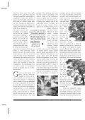 Acrobat Distiller, Job 3 - Le Terrier - Page 4