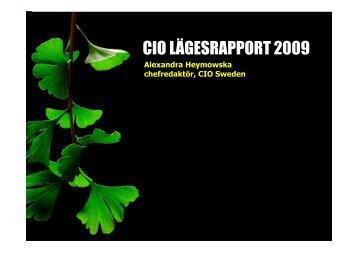 CIO LÄGESRAPPORT 2009 - IDG