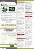 Banane_04_2013.pdf - La Banane du Lundi - Page 2