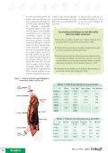 Prédiction du poids de gras des porcs charcutiers à partir de la ... - Ifip - Page 2