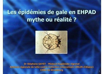 Les épidémies de gale en EHPAD - CLIN Est