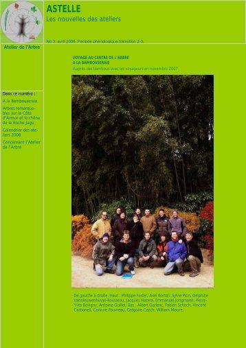 N° 3 : Avril 2008 - Atelier de l'arbre