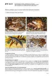 Notices pratiques pour la conservation des batraciens ... - Karch