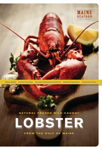 lobster lobster - Maine Seafood Ventures