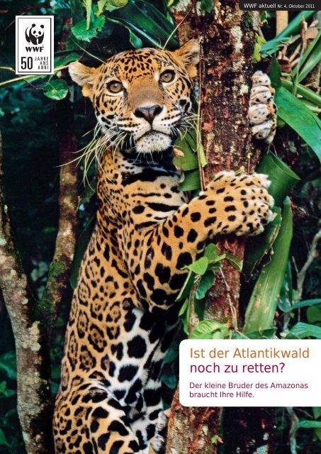 Ist der Atlantikwald noch zu retten? - WWF Schweiz