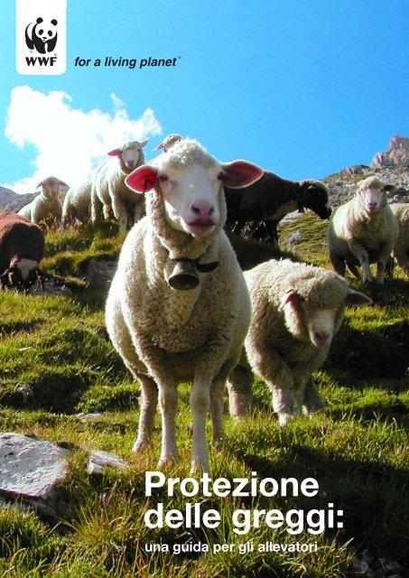 Protezione delle greggi: - WWF Schweiz