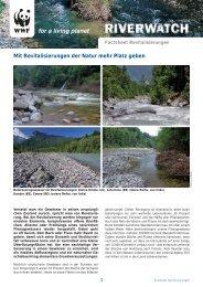 Mit Revitalisierungen der Natur mehr Platz geben - WWF Schweiz