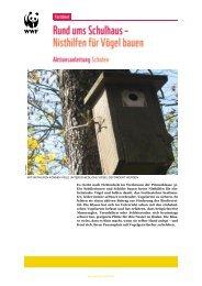 Nisthilfen für Vögel bauen - WWF Schweiz