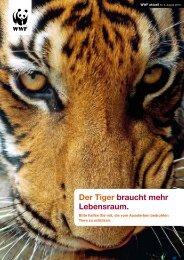 Der Tiger braucht mehr Lebensraum. - WWF Schweiz