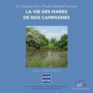 La vie des mares de nos campagnes - Portail de l'Agriculture wallonne