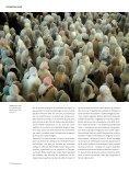 Éthiopie Une spiritualité à fleur de terre (ARTS ... - PAOLA VIESI - Page 3