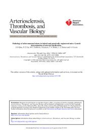 Pathology of Atheromatous Lesions in Inbred and Genetically ...