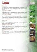 Vitalis Catalogue Ca Fr - Vitalis Canada - Vitalis Organic Seeds - Page 5