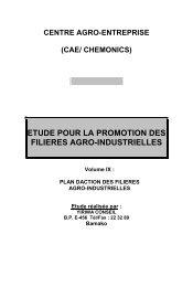 Voir le document - API : Agence pour la Promotion des ...