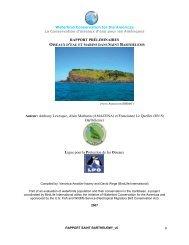 RN St Barthélemy - BirdLife International