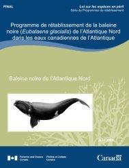 Programme de rétablissement de la baleine noire - Réseau d ...