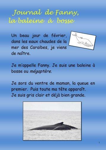 Histoire de Fanny la baleine - Mon école, ma baleine
