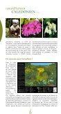 Le caillou vert n°8, la lettre d'information du WWF en Nouvelle ... - Page 2