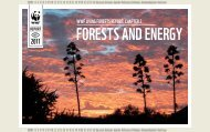 WWF LIVING FORESTS REPORT: CHAPTER 2
