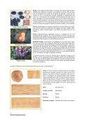 Guía de Procesamiento Industrial - RedPeIA - Page 4