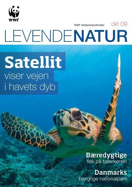 viser vejen i havets dyb - WWF