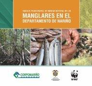 Los ecosistemas de manglar en el departamento de Nariño - WWF
