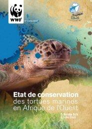 des tortues marines en Afrique de l'Ouest - WWF