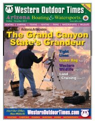 The Grand Canyon State's Grandeur - Arizona Boating & Watersports