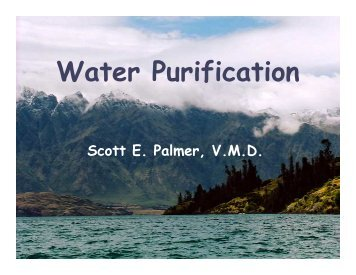 Water Purification - Backpacking 101