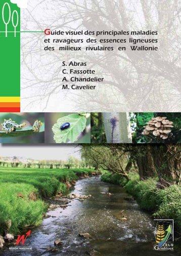 Guide visuel des principales maladies et ravageurs des essences ...