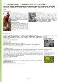CENTRE DE FORMATION LAINE ET FEUTRE - Histoire de Laines - Page 5