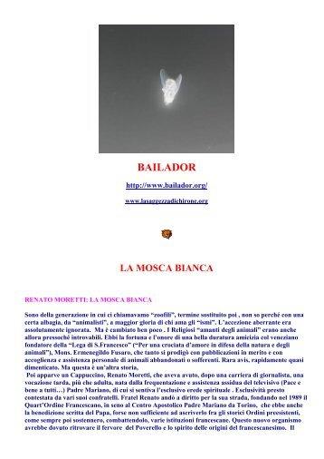 Newsletter Bailador 12-04-11