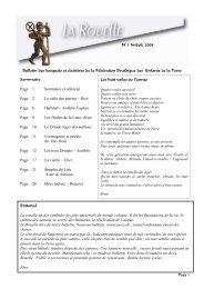 N°1 - Imbolc 2008 - Assemblée Druidique du Chêne et du Sanglier