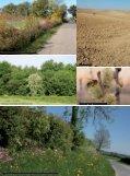Livret Arbres & Pollinisateurs - Arbre & Paysage - Page 4